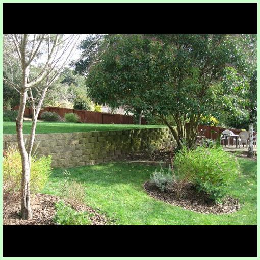 Backyard view of Abeona Home